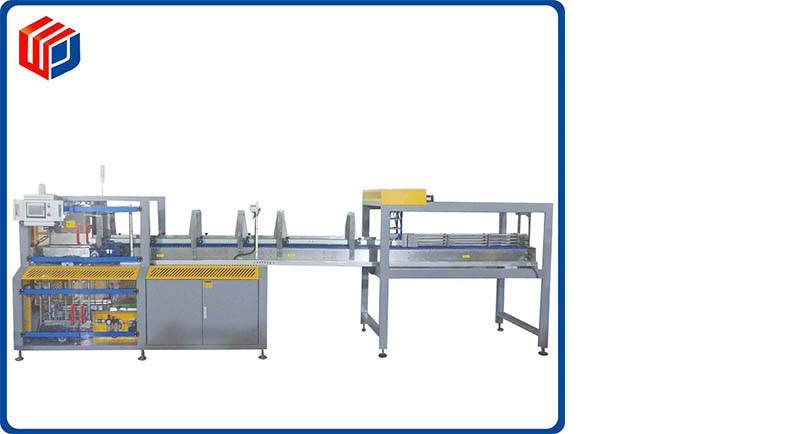 Case filling machine LZX-18F